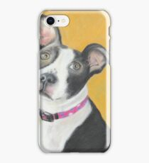Portrait of a Pit Bull iPhone Case/Skin