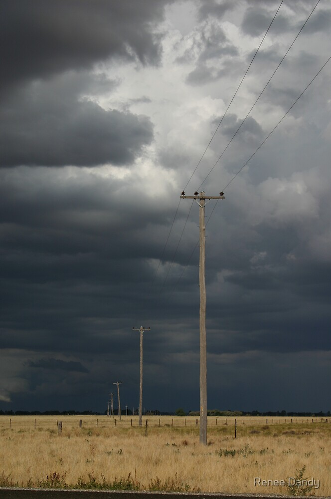 Poles in the storm by Renee Dandy