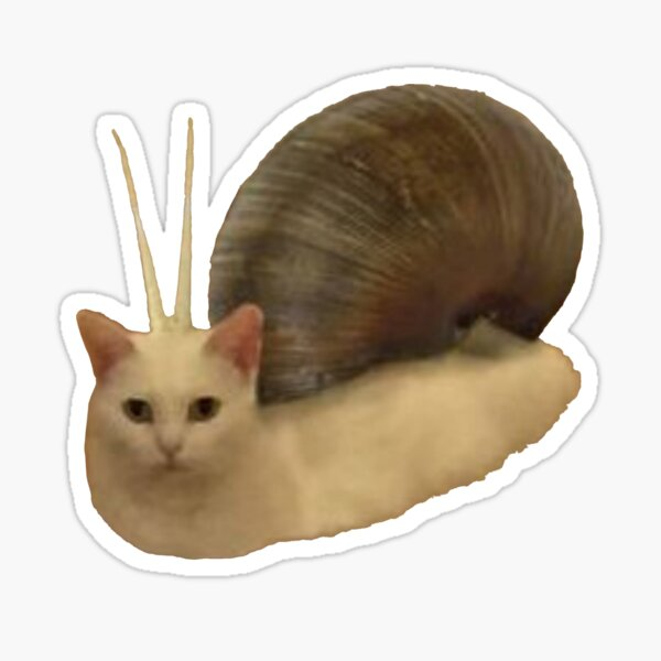Snail Cate Sticker