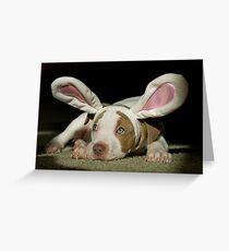 Rabbit Pup  Greeting Card