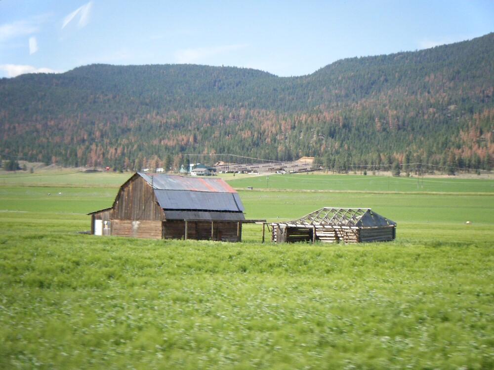abandoned farm by richardthor