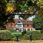 The Manor House Through The Trees by EasterDaffodil