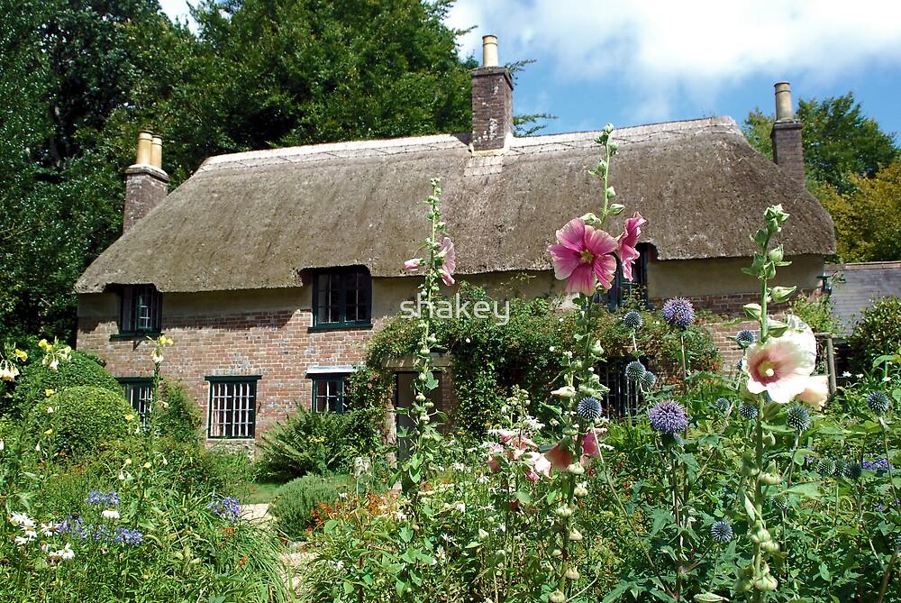 Thomas Hardy`s Cottage by shakey