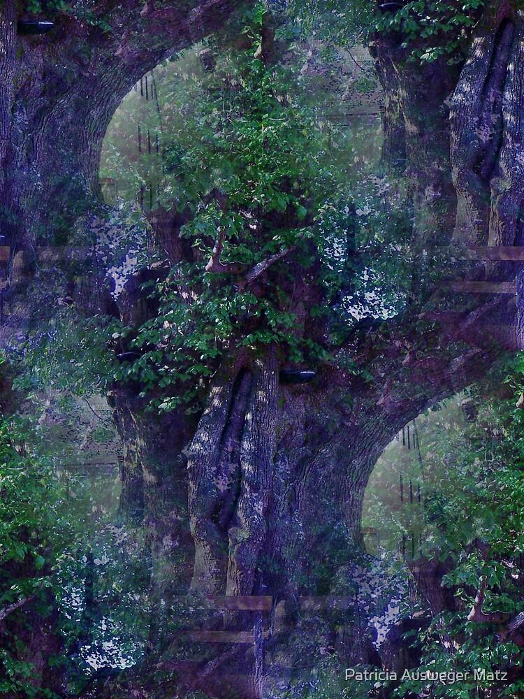 dreaming tree II by Patricia Ausweger Matz