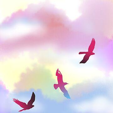 Raibow Sky by jolanta
