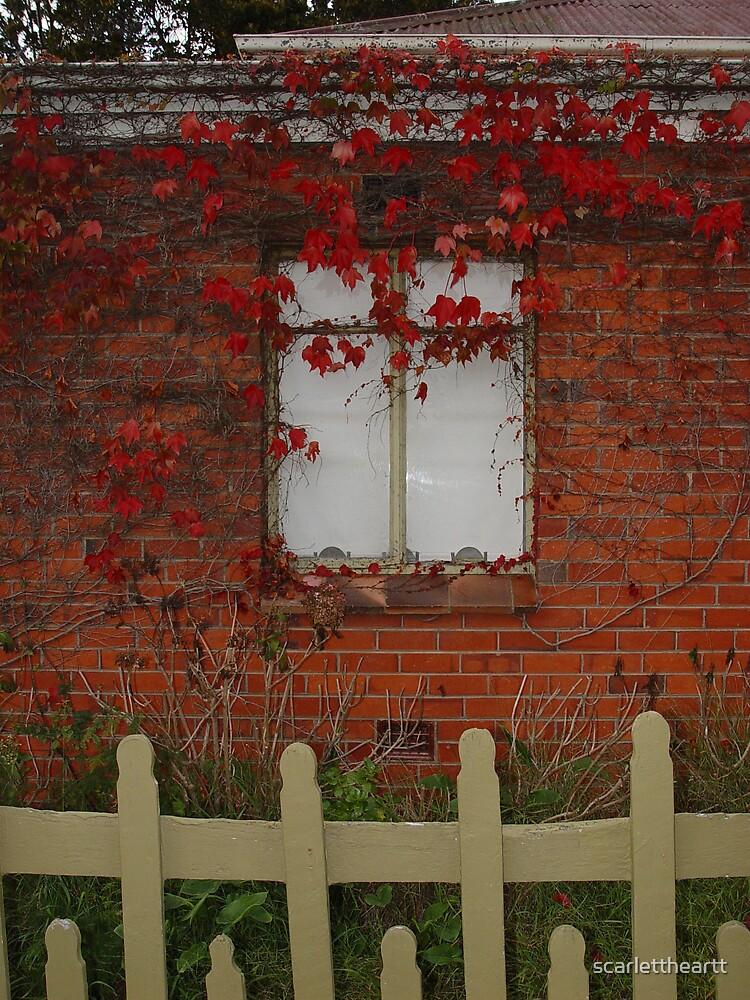 window2 by scarlettheartt