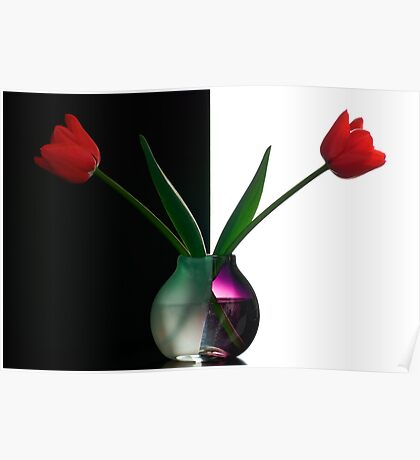 Vase With Tulips Poster