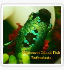 Vancouver Island Fish Enthusiasts Sticker