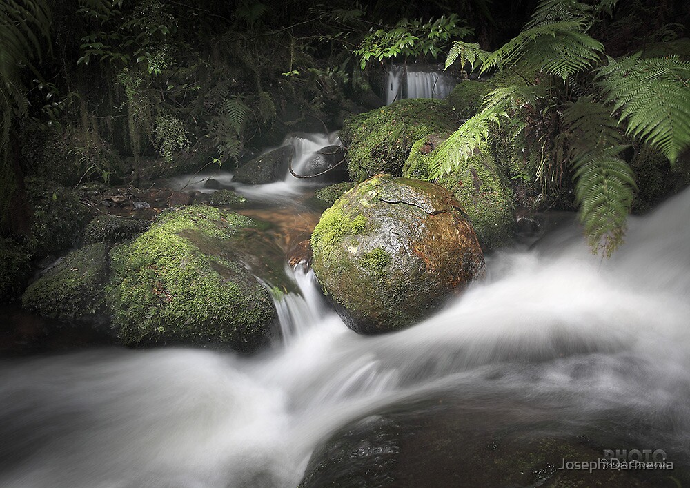 Cement Creek 160 by Joseph Darmenia