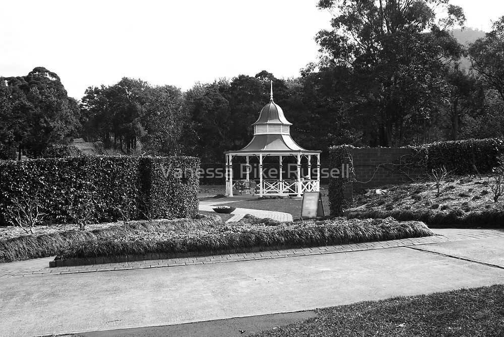 Rose garden at Wollongong Botanic Gardens by Vanessa Pike-Russell