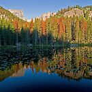 Nymph Lake Reflections by Gary Lengyel