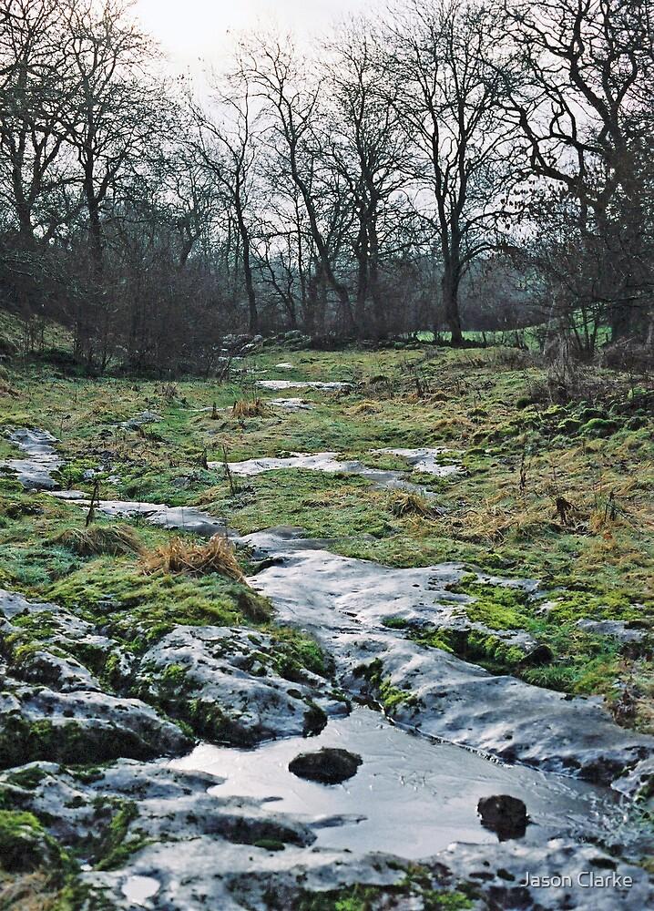 In Cumbria by Jason Clarke