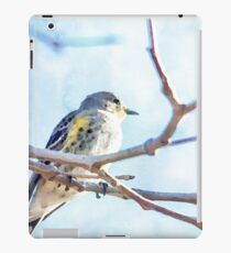 Watercolor Painting; The Female Yellow-rumped Warbler Perching on the Tree iPad Case/Skin