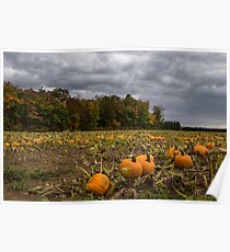 Thanksgiving Goodies on the Farm Field Poster