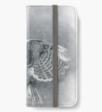 Great Grey iPhone Wallet/Case/Skin