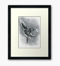 Great Grey Framed Print
