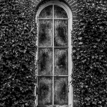 Overgrown Chapel Window by Spartanbass