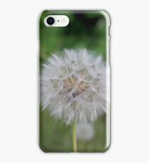 Dandelion Flower iPhone Case/Skin