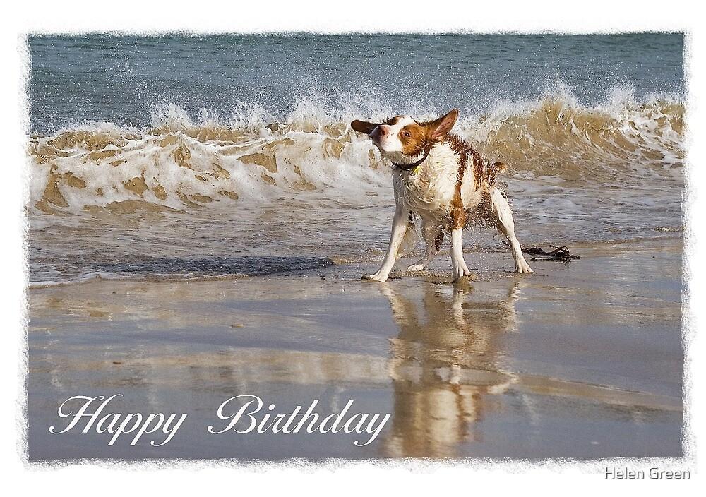 Birthday Card No 2 by Dog Shop
