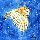 Flying Barn Owl by kroksg