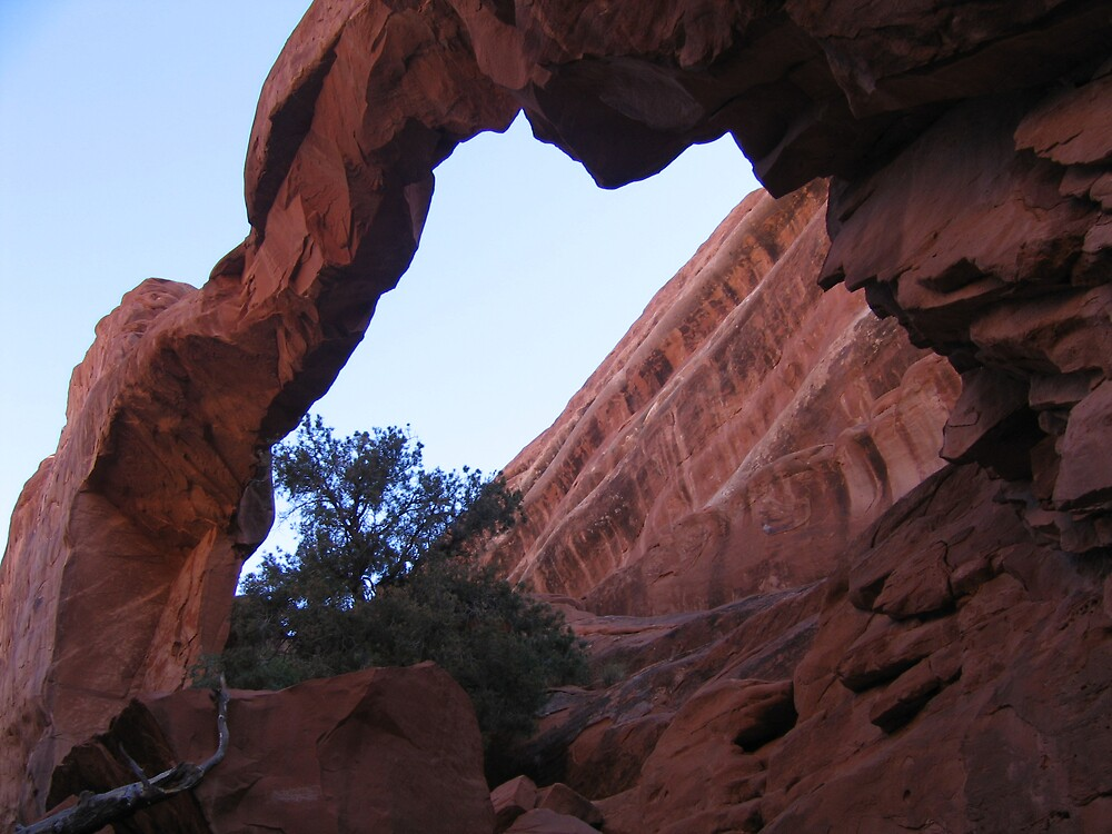 Arches - Wall Arch by Luke Brannon