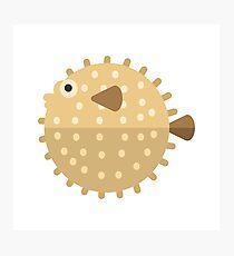Purcupine Fish Primitive Style Photographic Print