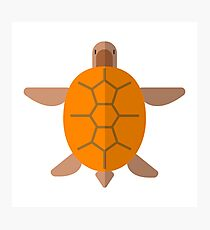 Turtle From Above Primitive Style Photographic Print