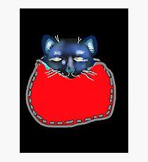 CAT ASLEEP IN POCKET 'BLACK' Photographic Print