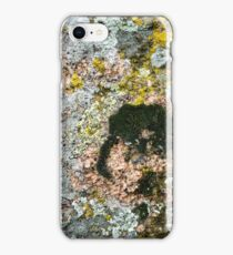 Stone texture - details, background and texture image iPhone Case/Skin