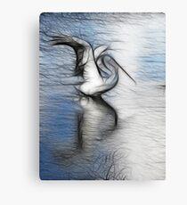 Pelican dreams Metal Print