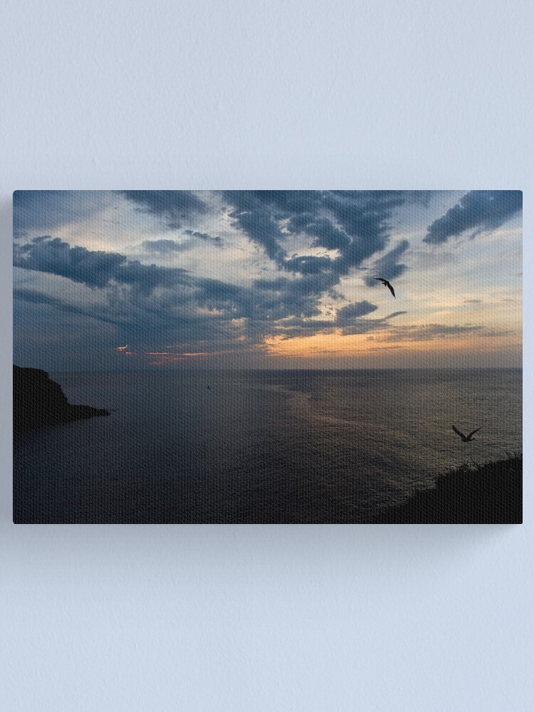 Alternate view of Wings of Nyx Canvas Print