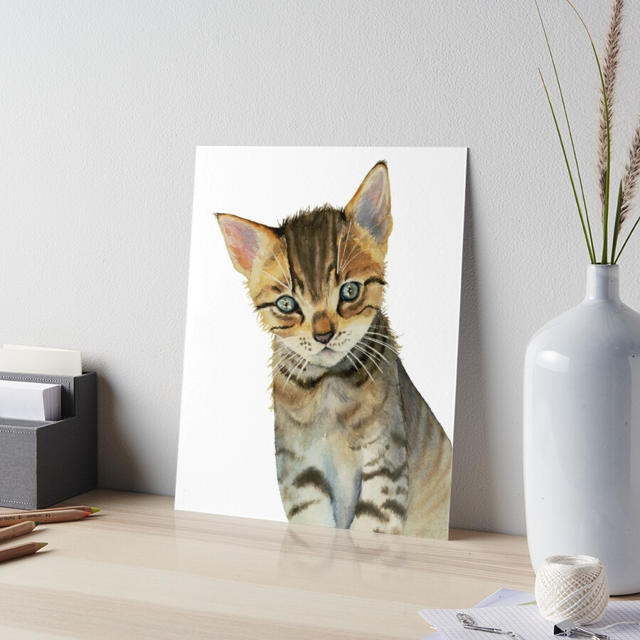 European Shorthair Kitten Watercolor Painting by namibear