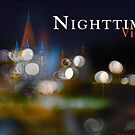 Nighttime In Vienna by Ted Byrne