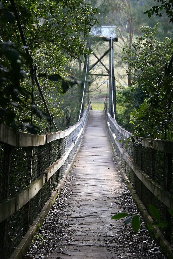 suspension bridge by kimtruong