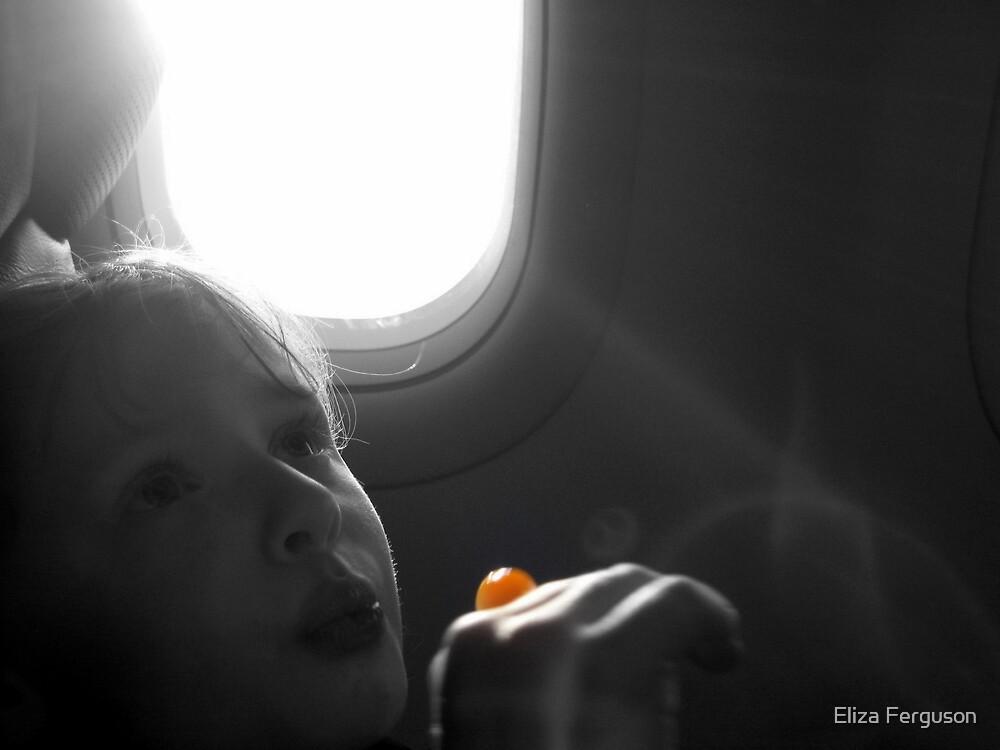 On a jet plane by Eliza Ferguson