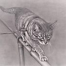 Brave Pole Walking Cat Graphite Drawing by Pam Humbargar
