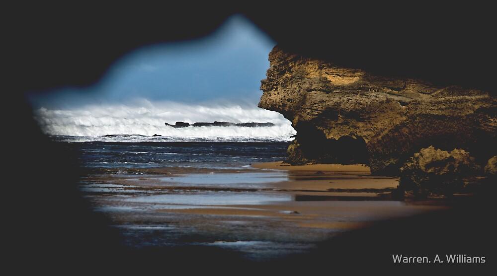 Thru the Hole by Warren. A. Williams