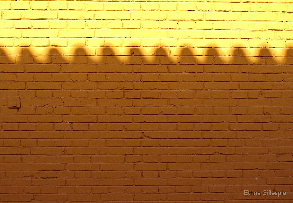 Wall Bumps  by Ethna Gillespie