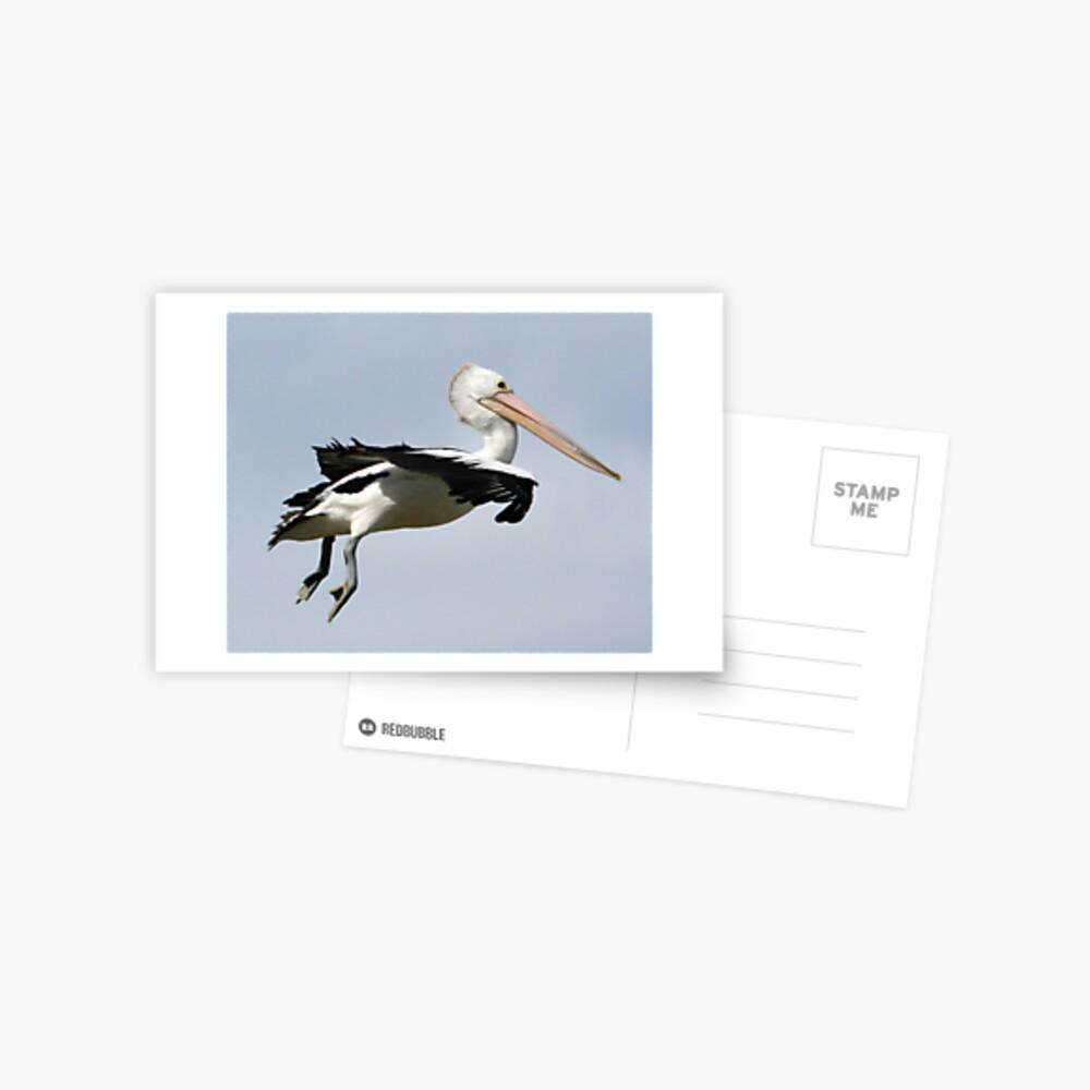Just hang'n  Postcard