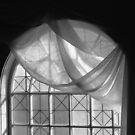 Arched Window Monochrome No 1 by Wayne King