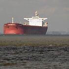 Oil Tanker Heading for Immingham by Billlee
