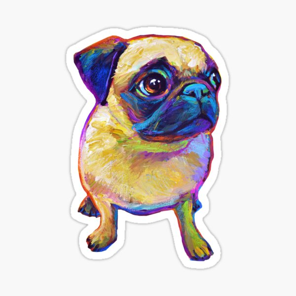 Adorable Pug Sticker