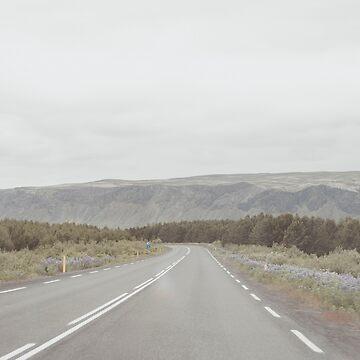 icelandic landscape by zoemeinke