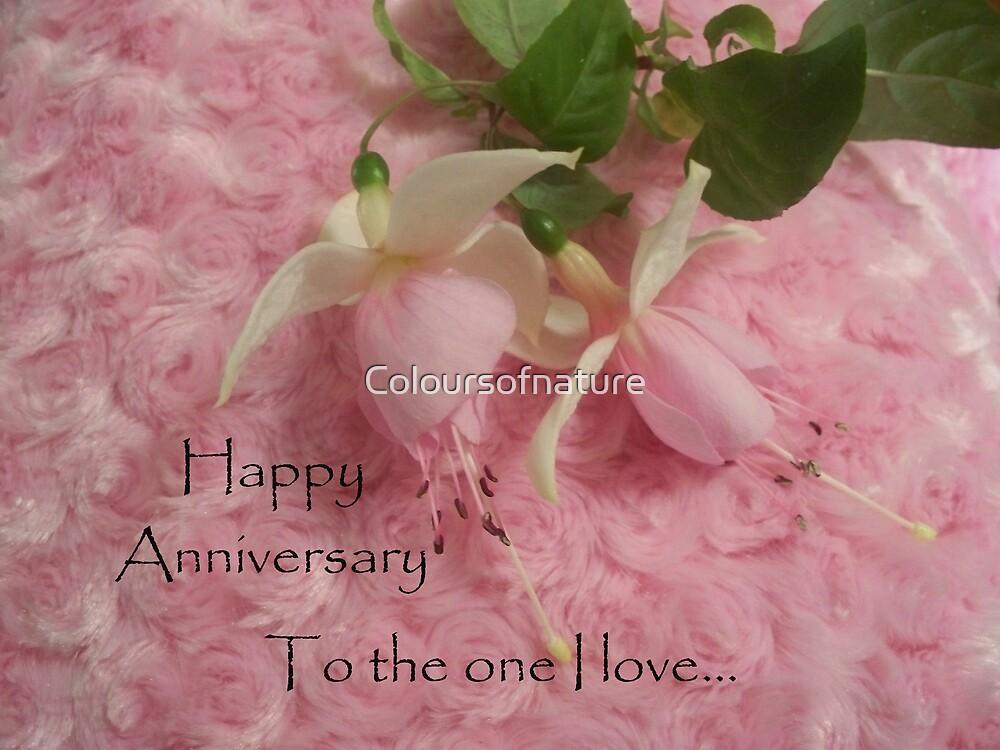 Happy Anniversary by Coloursofnature