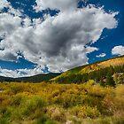 Colorado Skies by Edith Reynolds