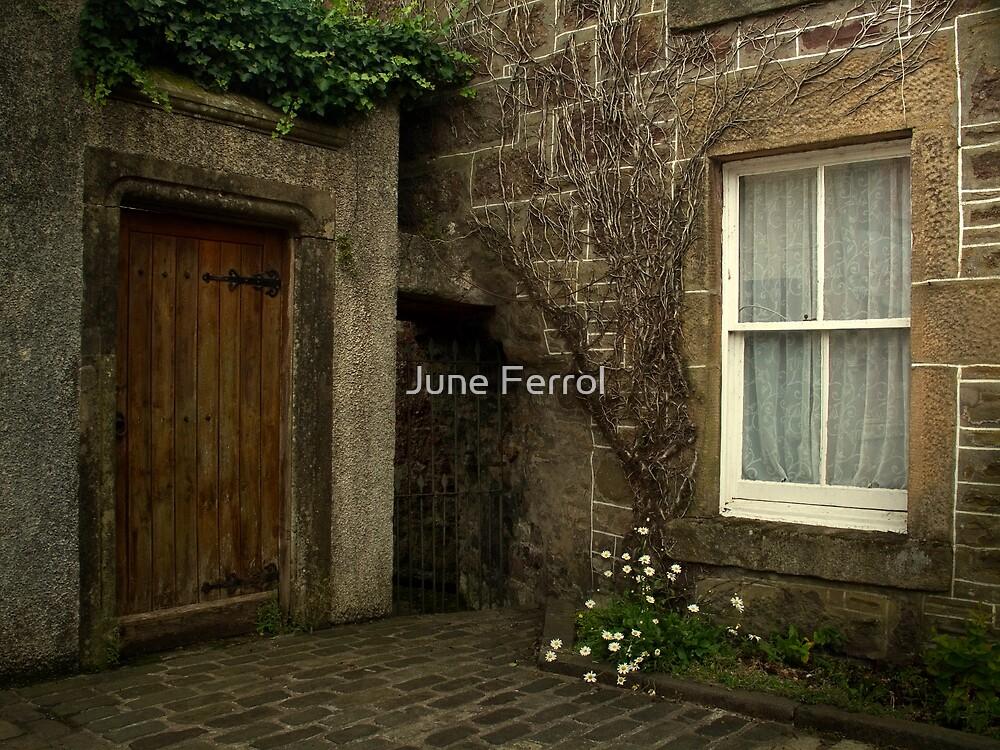 SCOTCH CORNER by June Ferrol