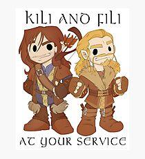Little Fili and Kili Photographic Print