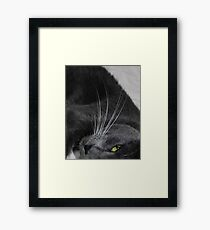Max... Framed Print
