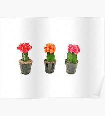 Cute Pastel Cactus Cacti Poster