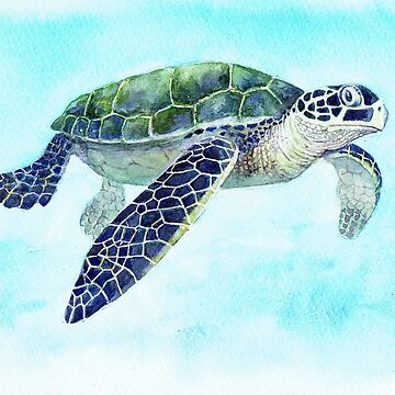 Postcards for the Reef 2: Happy Turtle by MiMiDesigns